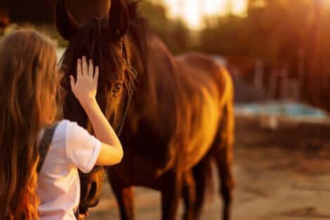 Hypohobie : la peur des chevaux.