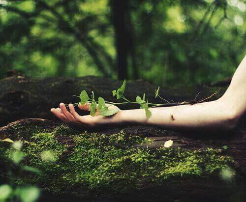Quand je crois en moi, je réveille mes forces et je grandis