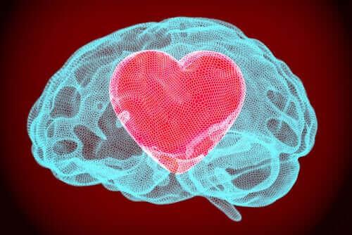 Autorégulation émotionnelle : l'autre montre nos blessures