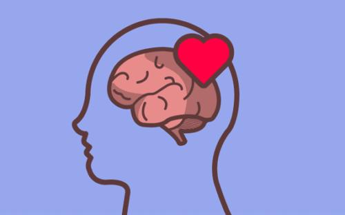 Autorégulation émotionnelle : le rôle du cerveau.