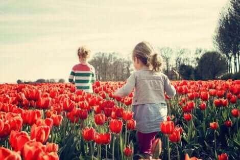 Les compétences socio-émotionnelles s'apprennent dès l'enfance.