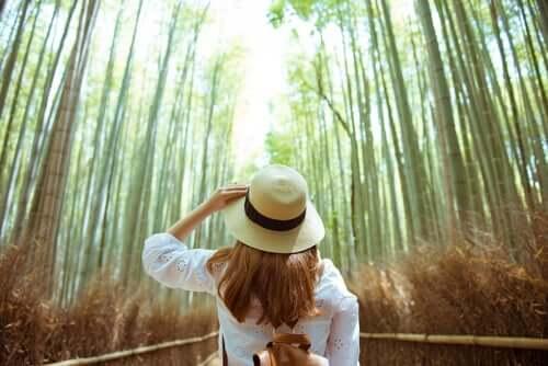 Une femme dans une forêt remplie de bamboos.