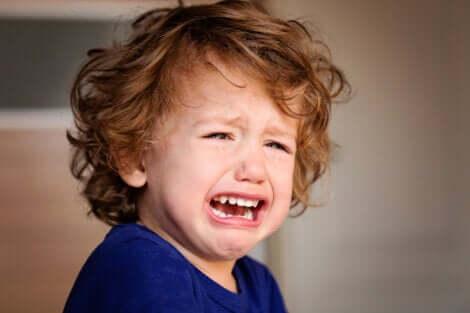 Un petit garçon en colère.