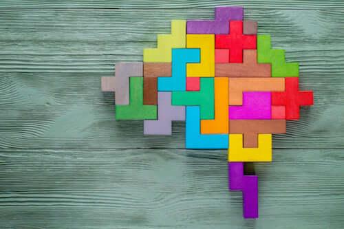 Quels sont les types d'intelligence ?
