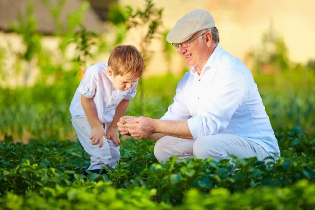 Un enfant en compagnie d'une personne âgée.