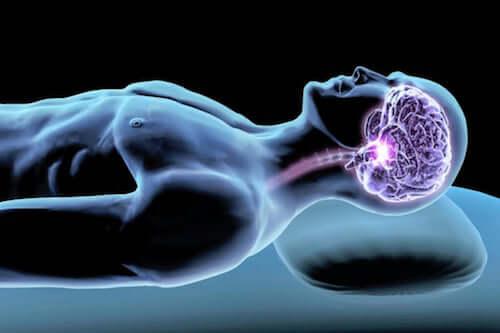 Hormones du sommeil : les médiatrices du repos