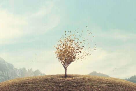 Une illustration qui représente un arbre sur une colline.