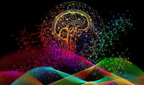 L'importance des empreintes digitales du cerveau