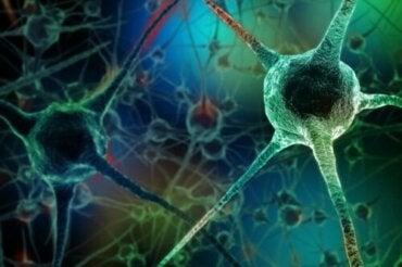 7 mauvaises habitudes qui tuent les neurones