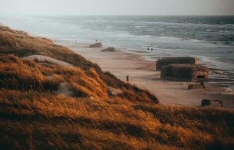 Des bunkers sur une plage.