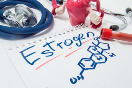Quelles sont les caractéristiques des œstrogènes ?