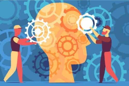 Pour une éducation axée sur le cerveau, et non sur les informations