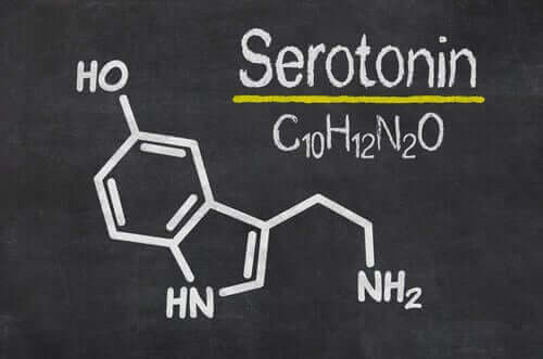La sérotonine est impliquée dans la neurobiologie de l'anxiété.