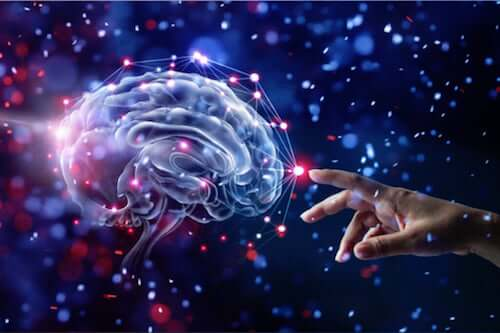 12 habitudes qui prennent soin du cerveau et réduisent le risque de démence