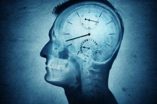 Qu'est-ce la chronobiologie et comment peut-elle nous affecter ?