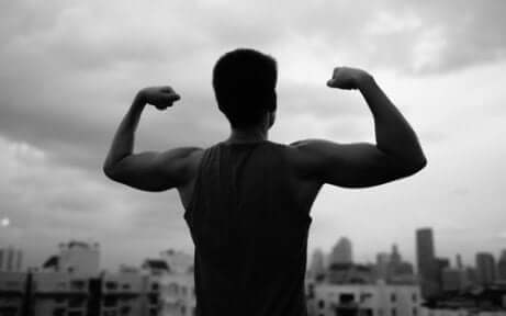 Le rôle de la testostérone.
