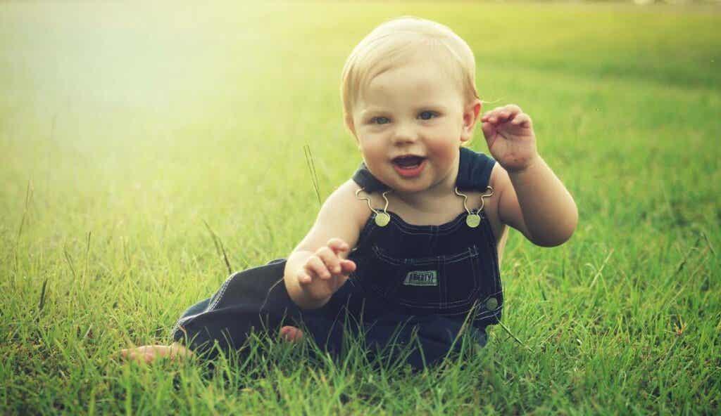 Un bébé dans un champ.