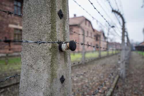 Camp de concentration.