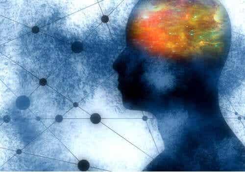 3 fonctions marquantes des neurones miroirs