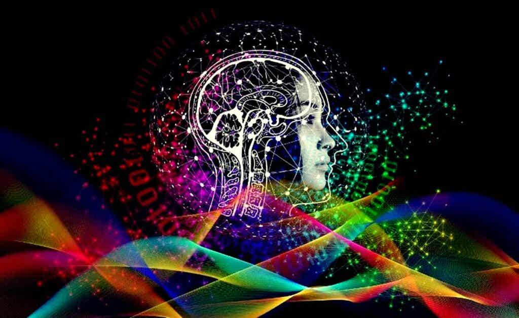 Cerveau illuminé.