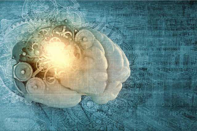 Les mécanismes du cerveau.