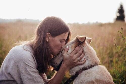 Amour d'un chien.