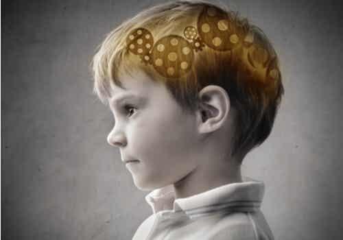 Mécanisme cérébral d'un enfant.