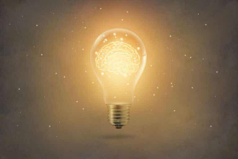 L'apprentissage par insight, en quoi cela consiste-t-il ?