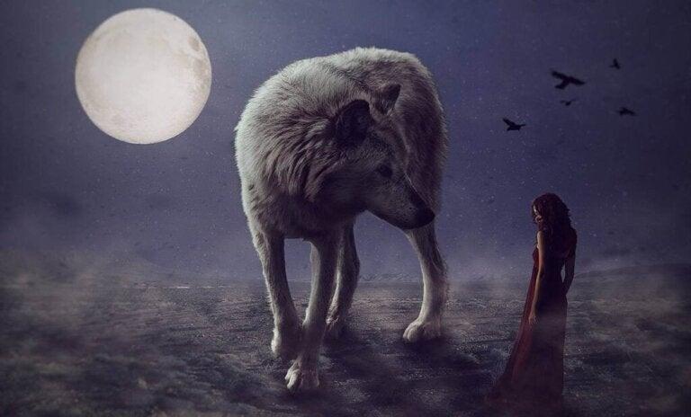 Quand les chagrins nous hantent comme des loups féroces